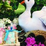 Chá tema piquenique com cegonha branca segurando um bebê, flores e um cesto com biscoitos personalizados.